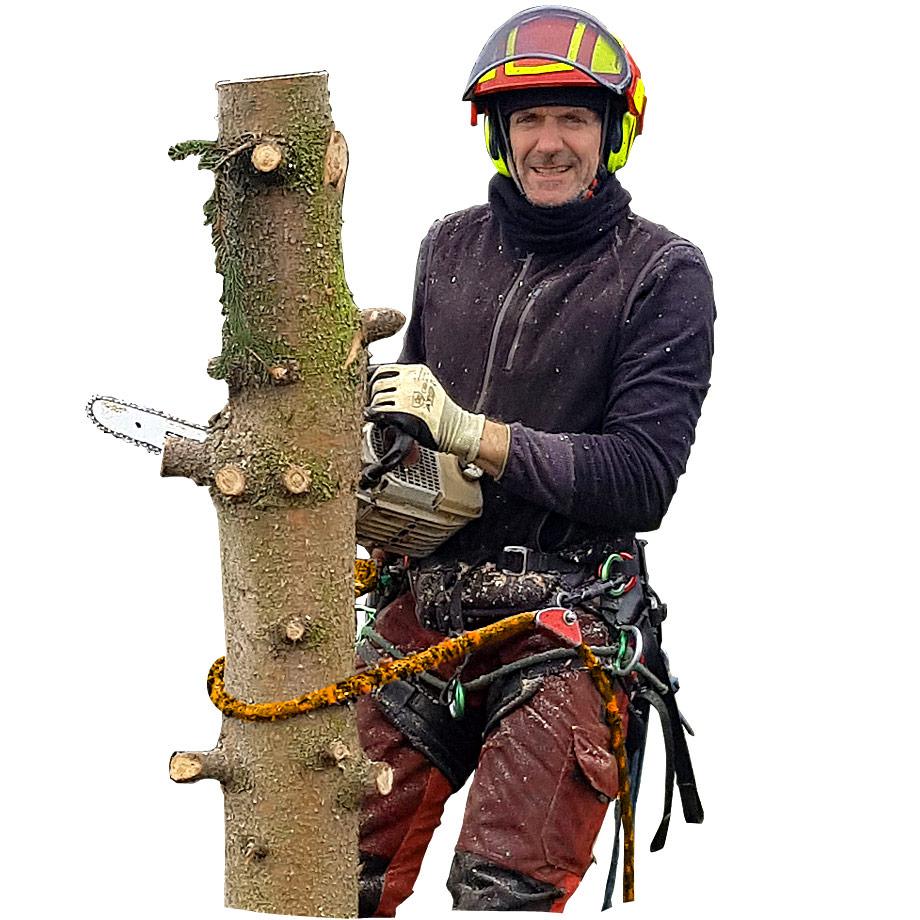 Kostenlose Vor-Ort-Baumbesichtigung